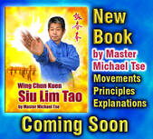 icon New Wing Chun Siu Lim Tao Book